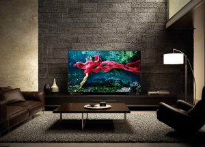 Buy The Sony Television At Best Prices Online