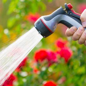 Things Necessary For Gardening
